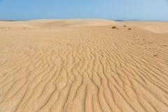 Como un desierto Imágenes de archivo libres de regalías