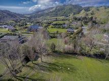 Como verde é o vale de Nikau foto de stock royalty free