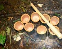 Como viver nas florestas e nas subsistências Fotografia de Stock