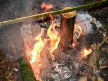 Como viver nas florestas e nas subsistências Fotos de Stock