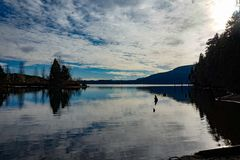 Comoxmeer, het Eiland van Comox Valley~Vancouver, BC, Canada Stock Fotografie