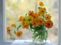 Comp. del fiore Fotografie Stock