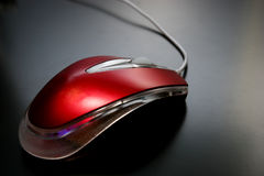 Comp Mouse Royalty Free Stock Photos