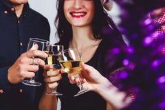 Compañía con los vidrios de champán fotos de archivo libres de regalías