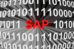Compañía, fabricante de software para las organizaciones SAP Fotografía de archivo libre de regalías