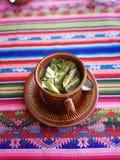 Compañero de coca Imagen de archivo