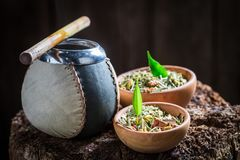 Compañero sabroso y fresco del yerba con bombilla y la calabaza Fotografía de archivo libre de regalías
