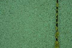 Compañero verde con la hierba Imágenes de archivo libres de regalías