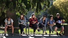 Compañeros de clase concentrados que aprenden junto al aire libre almacen de video
