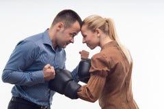 Compañeros de trabajo en guantes de boxeo Imagen de archivo libre de regalías