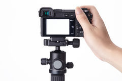 Compact digital camera on mini tripod Stock Image