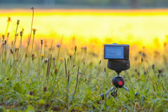 Compact digital camera on tripod with grass in the field or meadow. Grass and flowers in yellow and gold sunrise colors Stock Image