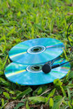 Compact disc and earphone. There are compact disc and earphone on the grassland Royalty Free Stock Image