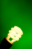 Compact flourescent light bulb on green background. A compact flourescent light bulb on a dark green background with copy space Royalty Free Stock Image
