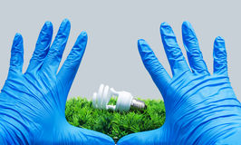 Compact fluorescence on artificial grass. Compact fluorescence on artificial green grass Royalty Free Stock Image