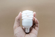 Compact Fluorescent Lamps with lighting Stock Photo