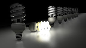 Compact fluorescent lamps in a row. One is lamp is enlightening. Idea Concept Stock Photography