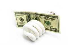 Compact fluorescent light. Bulbs and US Currency isolated on white Royalty Free Stock Image