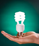 Compact Fluorescent Light Bulb Stock Photos