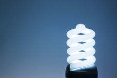 Compact Fluorescent Light Bulb. Stock Photo