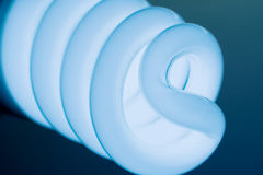 Compact Fluorescent Light Bulb. Stock Photography