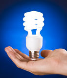 Compact Fluorescent Light Bulb in Hand Stock Photo