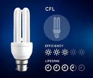 Compact fluorescent light bulb infographic with approximate estimate of energy and efficiency. Stock Images