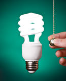 Compact Fluorescent Light Bulb Switched On Stock Photography