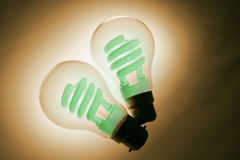 Compact Fluorescent Light Bulbs Stock Photo