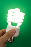 Compact Fluorescent Lightbulb Stock Image