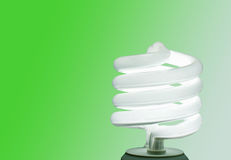Compact fluorescent lightbulb on green Royalty Free Stock Images