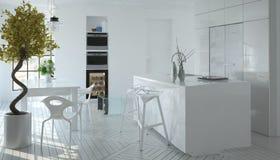 Compact modern wit keukenbinnenland Stock Afbeelding