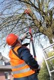 Compact power saw, holder, garden worker. Work in a garden by means of a compact power saw with the put forward holder Stock Image