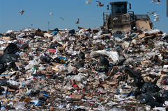 Compactor in landfill royalty free stock image