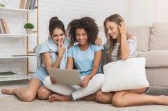 Compagni di camera felici che per mezzo del computer portatile, Internet praticante il surfing a casa immagini stock