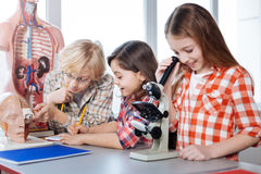 Compagni di classe produttivi che lavorano all'assegnazione di biologia Fotografia Stock