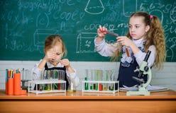 Compagni di corso della scuola Analisi chimica Provette con le sostanze variopinte Attrezzatura di scuola per il laboratorio fotografie stock libere da diritti