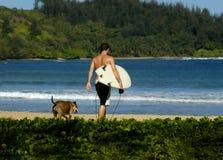 Compagni praticanti il surfing Fotografia Stock