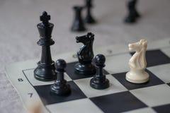 Compagnon d'échecs avec le chevalier, échec et mat ! photos libres de droits