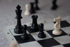 Compagnon d'échecs avec le chevalier, échec et mat ! photographie stock libre de droits