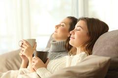 Compagnons de chambre détendant en hiver sur un divan Photo stock
