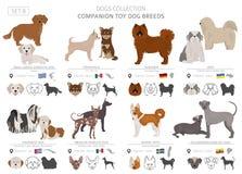 Companheiro e coleção diminuta dos cães de brinquedo isolados no branco Estilo liso Cor diferente e país de origem ilustração do vetor