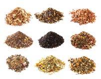 Companheiro, Rooibos e coleção do chá erval Imagens de Stock Royalty Free
