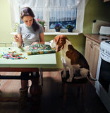 Companion. The dog looks as the mistress embroiders Stock Image