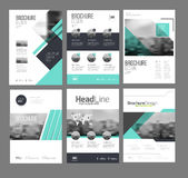 Company flyer vector illustration set. Six Front page and back page template. vector in A4 size Royalty Free Stock Photo