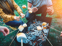 Company of friends by campfire making fried marshmallows Royalty Free Stock Images