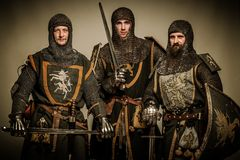 Company of knights Royalty Free Stock Photos