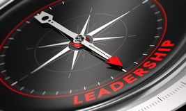 Company Leadership Development and Management Stock Images