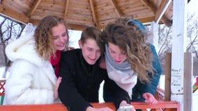 Company makes selfie in a park gazebo in winter stock video footage