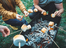 Company Of Friends By Campfire Making Fried Marshmallows Stock Image